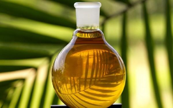 Полезные свойства репейного масла